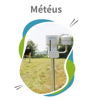 cs-Meteus_El