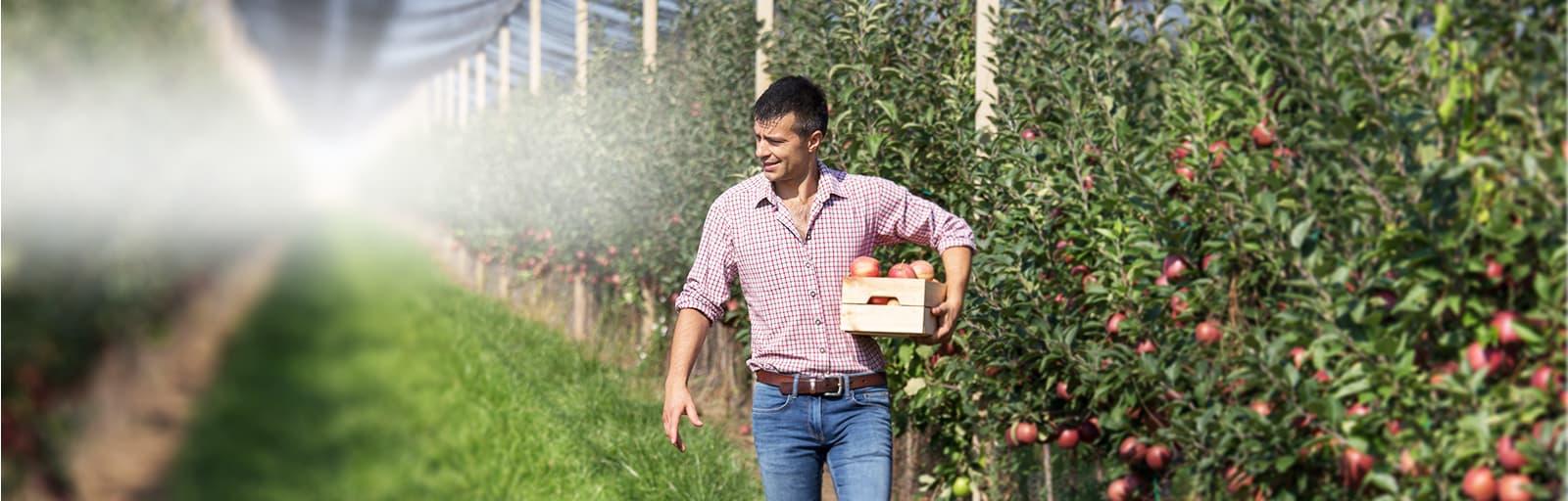 ISAGRI logiciel Geofolia pour faciliter la gestion des arboriculteurs