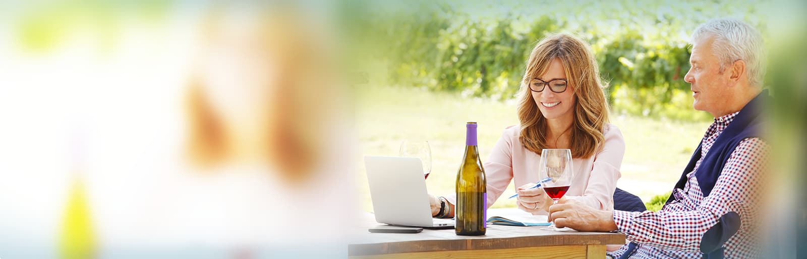 isagri isavigne la gestion viticole qui vous fait gagner du temps