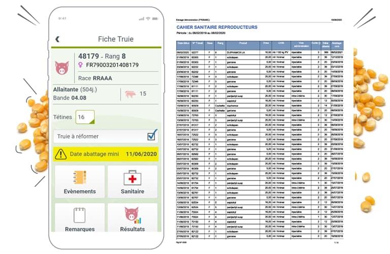 Visuel_Smartphone_copie_Pig_UP_HD_produit4