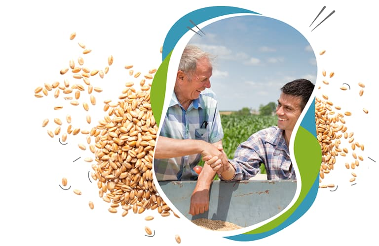 isaeta planification des travaux agricole