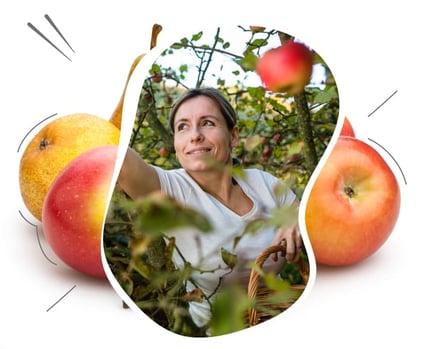 Arboriculteur ou maraîcher, j'augmente le revenu de mon exploitation grâce aux solutions ISAGRI.