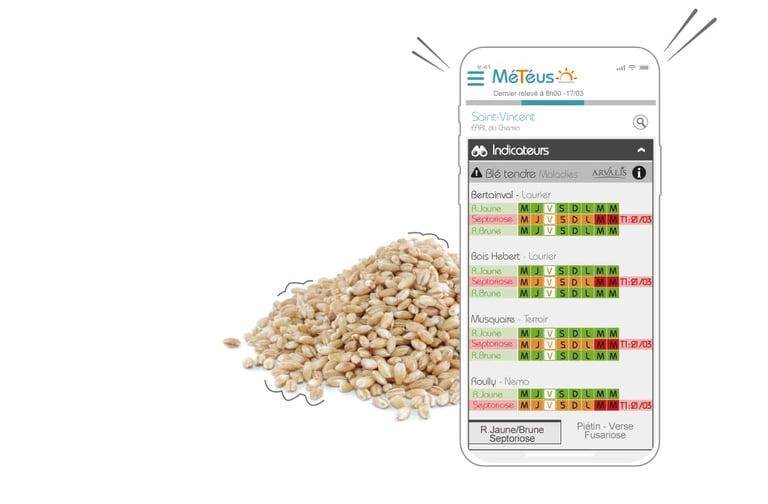 Météus station météo agricole vous aide à planifier les traitement phytosanitaires des parcelles