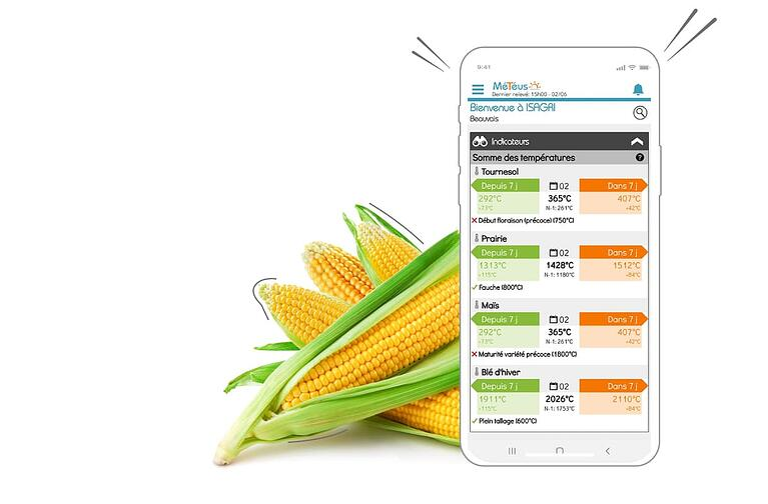 Avec l'application Smartphone Météus, je peux suivre à distance l'avancement des stades des parcelles de mes clients agriculteurs